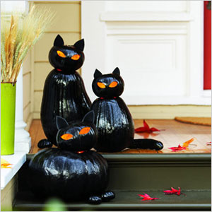02_blackcats